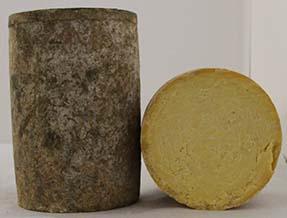 Alpine Heritage Creamery Cheese Wheel